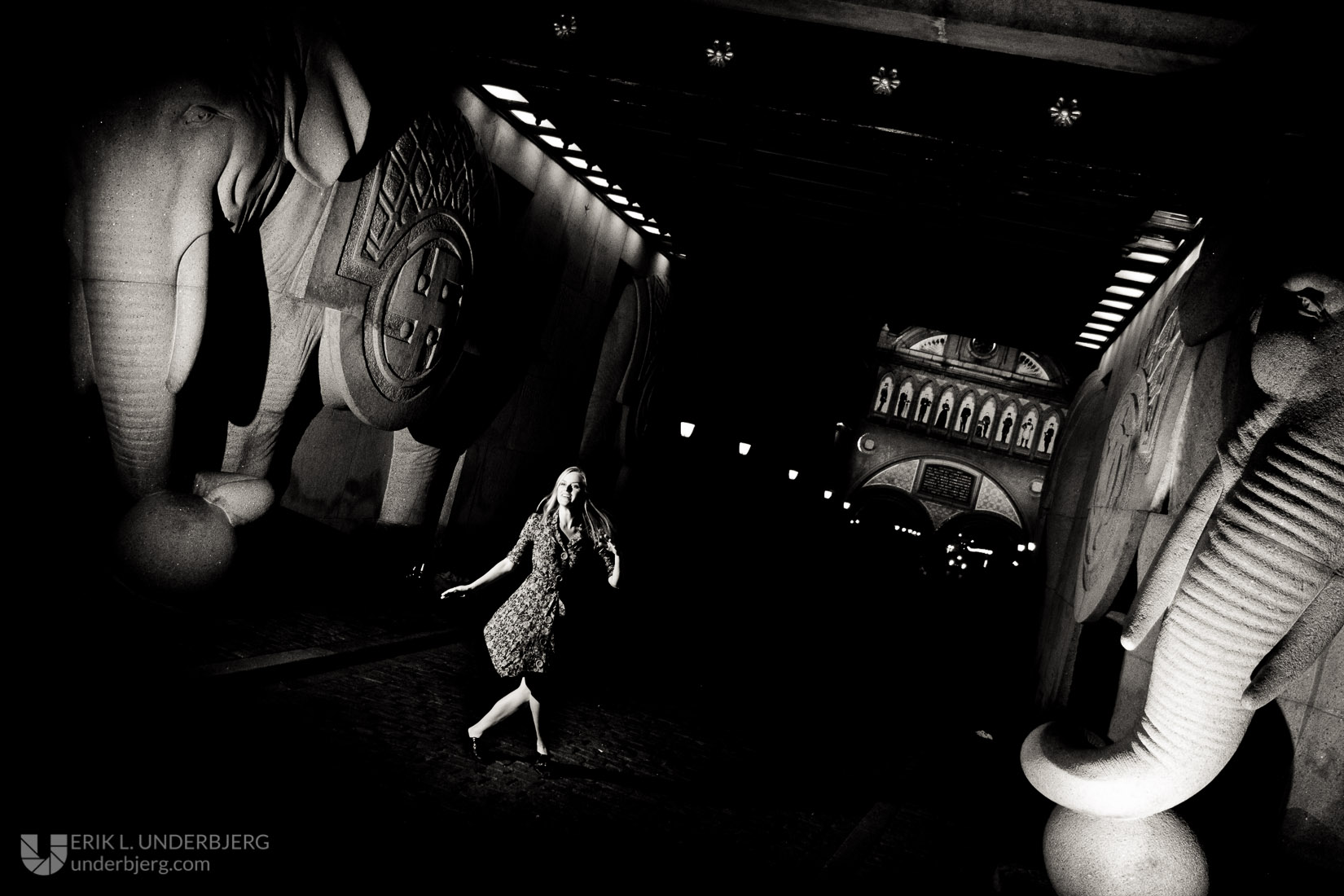 Film Noir elephants